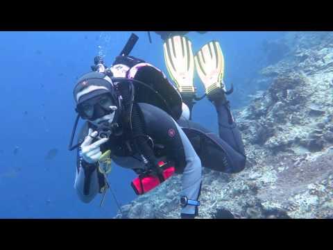 """Дайвинг на о. Сипадан в Малайзии (Март 2015, Клуб """"The Diver"""")"""