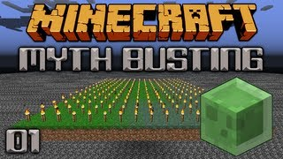 Can Slimes Spawn On Torches? [Minecraft Myth Busting 01]