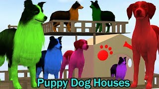 Learn Colors For Children With 3D Dog Cartoons - Animals Colors For Kidzee Rhymes