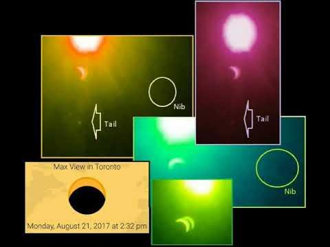 Zeta Report   Hurricane Evidence