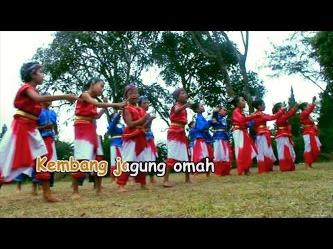 Kembang Jagung - Taman Siswa Yogyakarta