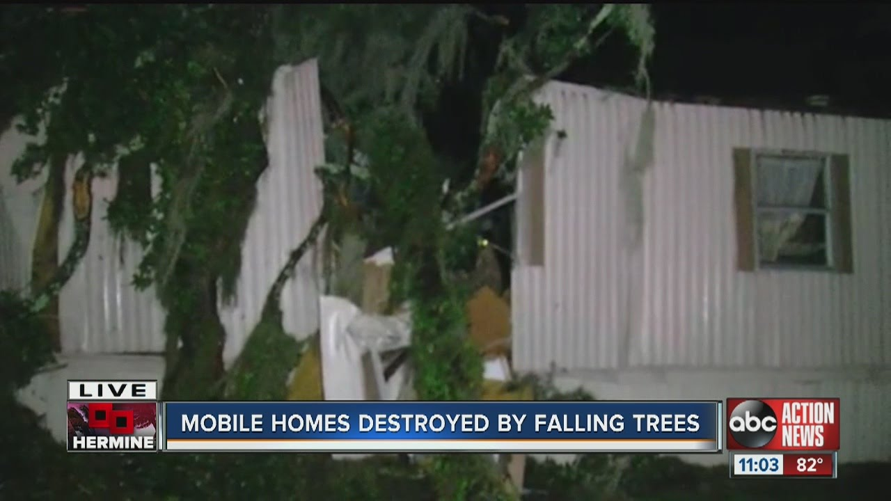 Mobile Homes Destroyed By Falling Trees In Valrico