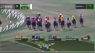 Vidéo de la course PMU PREMIO FORLIRAN