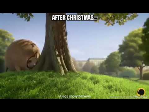 Nach Weihnachten - After Christmas | Ohne Worte #Weihnachten ...