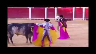 Fatal cornada recibio torero espanol Victor Barrio en Teruel