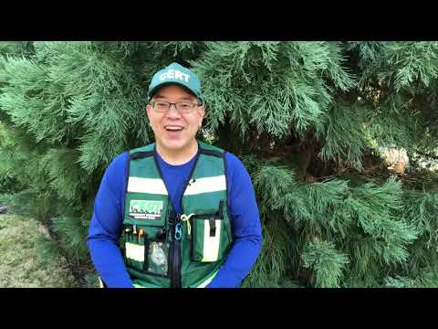 Community Emergency Response Team (CERT)