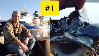 Рыбалка на Кольском заливе г Мурманск