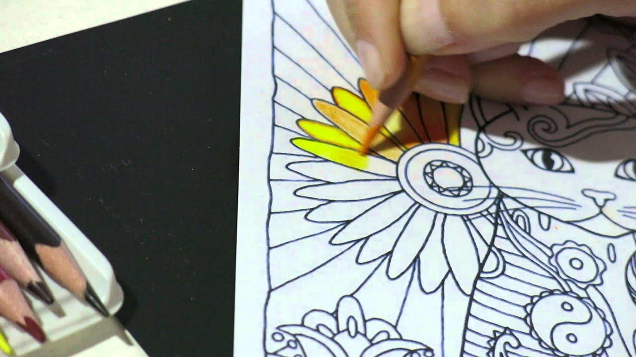 Livros De Colorir Para Adultos: Dicas Para Iniciantes Pintura Nos