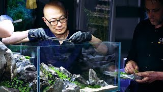 PLANTED TANK LEGENDS - IAPLC GRAND PRIZE WINNER DAVE CHOW 360 VIEW WORKSHOP