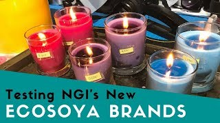 Testing the New NGI EcoSoya Brands for Soy Wax Candles