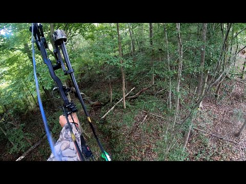 3 Day N.C. Bow Hunting