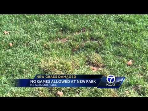 No games allowed at new Albuquerque park