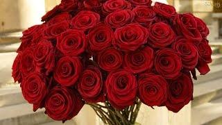 O nosso amor é como Rosas (Poema) By Igor Barros