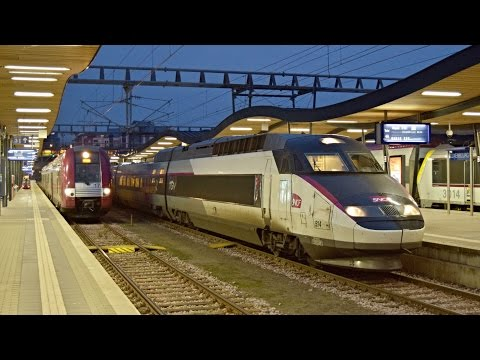 Trains Luxembourg, 26.11.2016