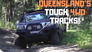 Hells Bells Track | with YouTuber Tyler Thompson