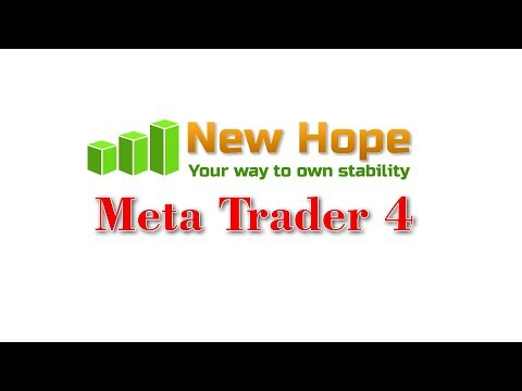 Arbitrage New Hope MT4 - client statement. Profit +20350$ -