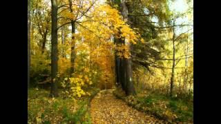 Antonio Vivaldi - Cztery Pory Roku - Jesień / The Four Seasons - Autumn