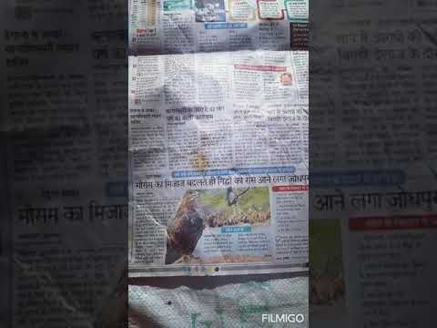 #Forest #Bird#newspaper#News#Dictionary#Dictionary chennal#World news#YouTube subscribe#YouTube
