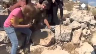 Download Video Wanita Palestina bertarung melawan tentara Israel untuk bebaskan anak laki-laki MP3 3GP MP4