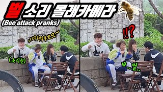 Prank ) Making a bee sound and sting prank!! A bee attack lol It's a bee sound this time