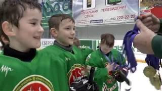 Арск, хоккей, Педан. «Ак Барс» на детском фестивале хоккея