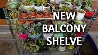 Garden Tour - New Balcon Shelve
