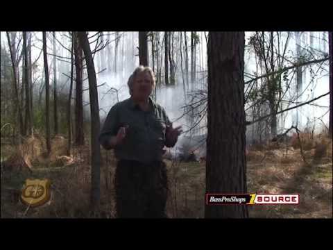 How To Execute A Controlled Burn or Prescribed Burn to Enhance Habit
