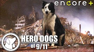 Hero Dogs of 9/11 – Feature, Documentary