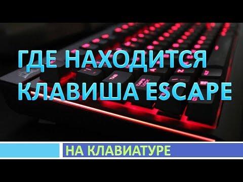 Где находится кнопка esc на клавиатуре компьютера(ноутбука ...