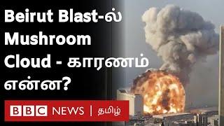 Lebanon blast ல் அடிபடும் Ammonium Nitrate & 'காளான் மேகம்' என்பது என்ன? – Explained | Beirut