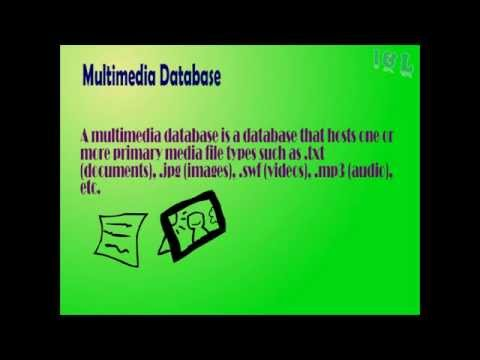 introduction to multimedia database