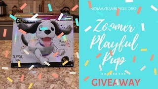 ZOOMER PLAYFUL PUP GIVEAWAY