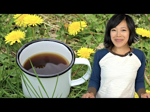 Confederate Army DANDELION COFFEE | Civil War Era Recipe | Hard Times - Food From Times Of Scarcity
