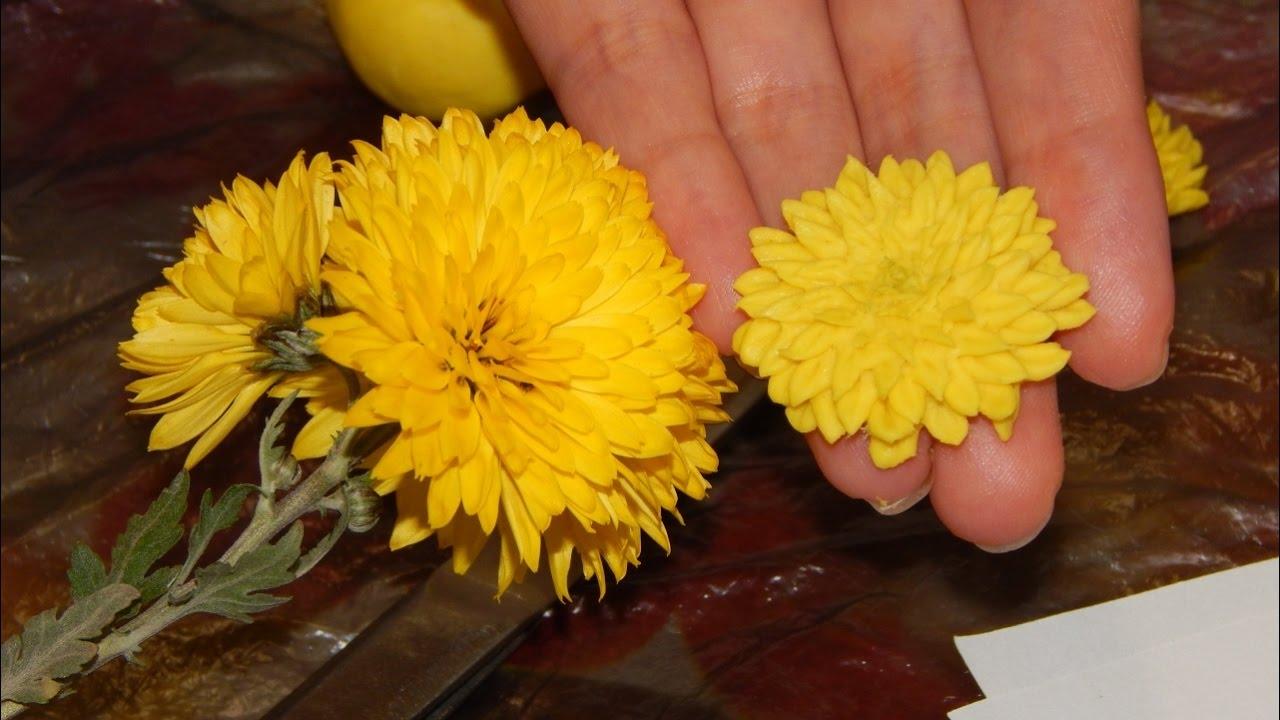 Хризантема из холодного фарфора легко мастер класс