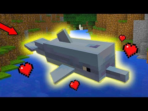 How To Find And Tame DOLPHINS In Minecraft PE (Pocket Edition) MCPE 1.4 Update Addon