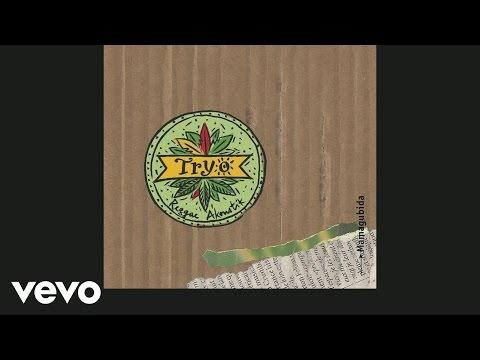 Tryo - La misère d'en face (Live) (Audio)