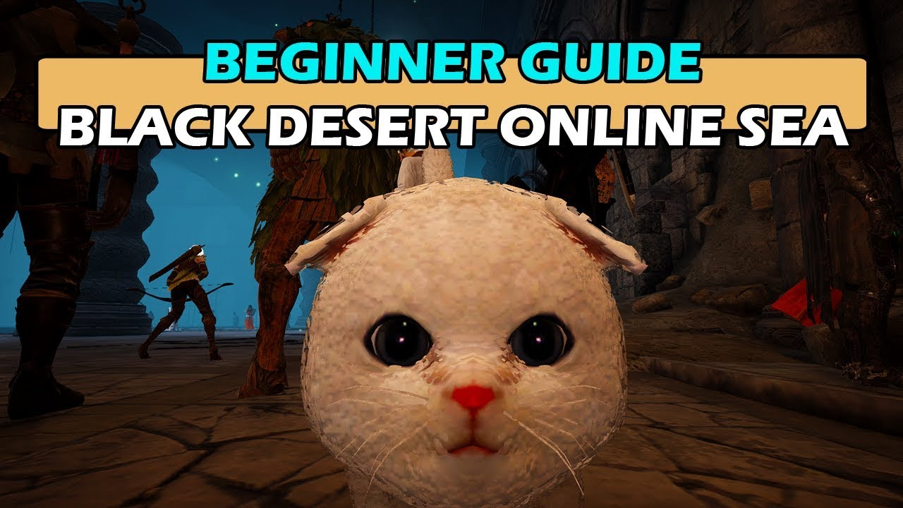 Beginner Guide - Black Desert Online South-East Asia (SEA)