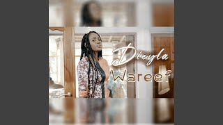 Download Wareef