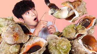 ENG SUB)Amazing! Chewy Giant Conch(Seashells) 5KG Eat Mukbang!🐚Korean Seafood ASMR Hoony Eatingsound