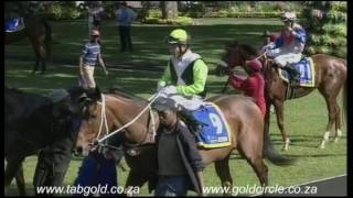 20160824 Greyville Race 4 won by MAGGIE MUGGINS
