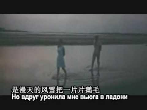 白天鹅[苏] Белая Лебедь 伽琳娜·涅纳舍娃 演唱