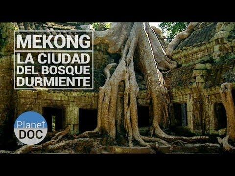 Mekong. Ankor, La Ciudad del Bosque Durmiente | Cultura - Planet Doc