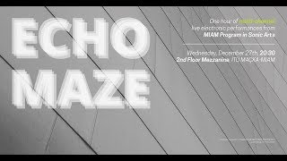 Echo Maze