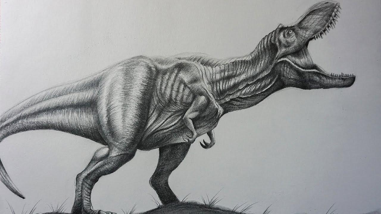 cómo dibujar un t rex realista a lápiz paso a paso dinosaurio