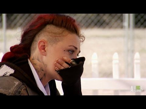 Battling Cancer Through Devastating Loss | Pit Bulls And Parolees