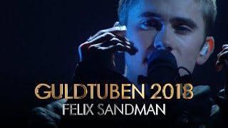 Felix Sandman - Every Single Day I Guldtuben 2018
