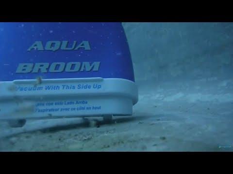 Demonstration Water Tech Aqua Broom Aspirateur Piscine Et Spa Robotpiscine Fr Youtube