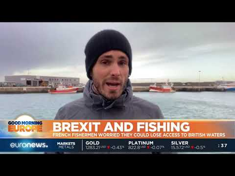 French Fisherman Worried They Could Lose Access To British Waters | #GME