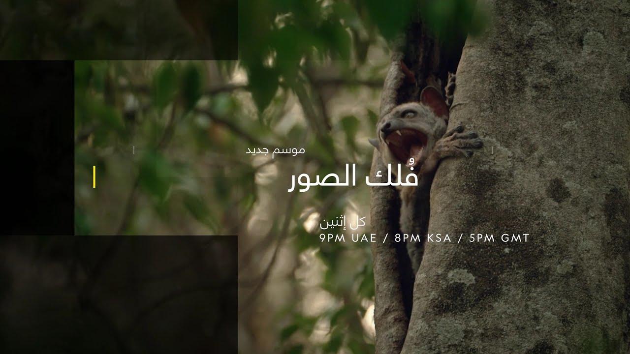 فُلك الصور | ناشونال جيوغرافيك أبوظبي