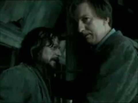 remus black personals In harry potter, one of the characters is named after remus—remus john lupin and at one point uses the code name romulus and at one point uses the code name romulus professor lupin is a teacher of defence against the dark arts, and is in fact a werewolf.